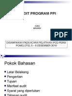 Audit Program Ppi Persi 2016