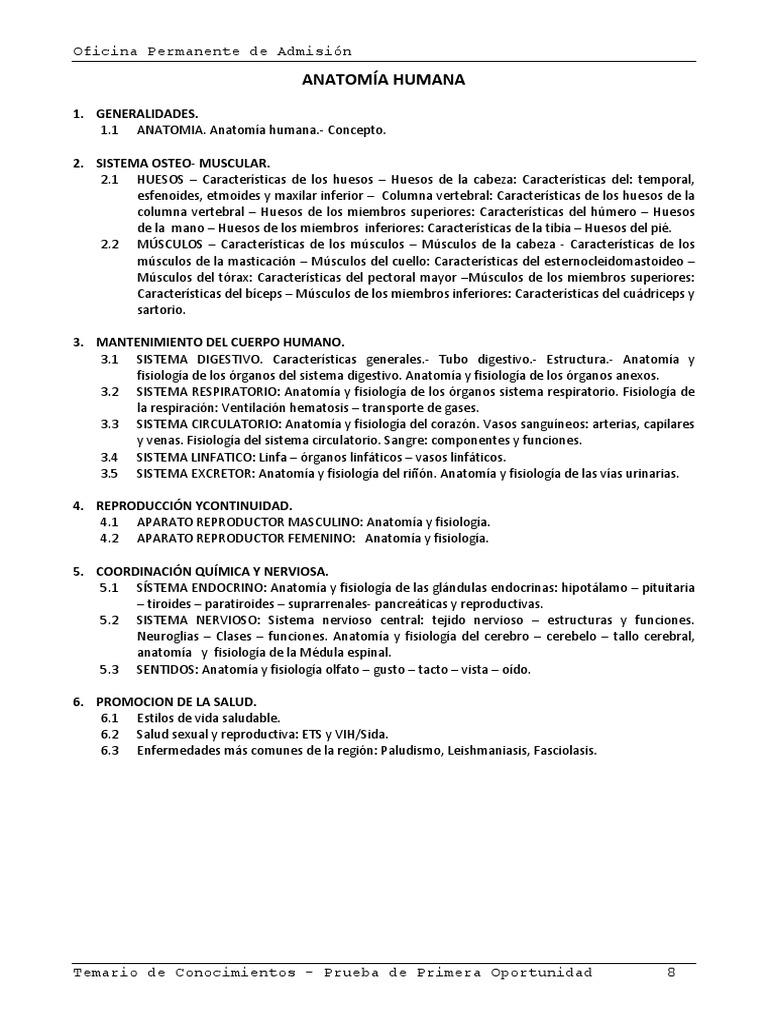 Atractivo Anatomía Y Fisiología 2 Prueba 1 Modelo - Anatomía de Las ...