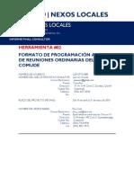 2. Formato de Programación Anual de Sesiones Ordinarias 16 May
