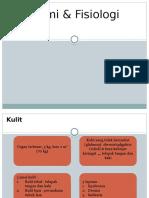 Anatomi & Fisiologi Kulit SIAP.pptx