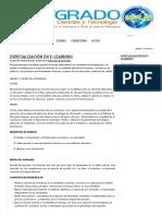 Especialización en E-learning