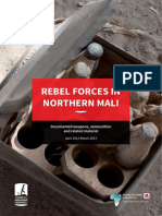 Rebel Forces in Northern Mali