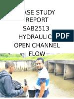 Case Study Report Hydraulic
