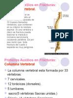 Epilepsia & Columna Cervical