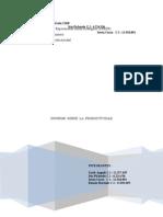 Informe_de_Productividad