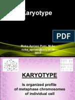 6- Karyotype.ppt