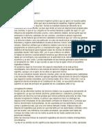 Derecho Precolombino