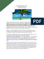 God Created Palm Trees