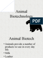 Animal Biotech