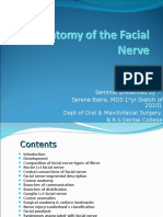 101562721-Anatomy-of-the-Facial-Nerve.ppt