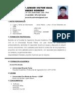 CV Palomino