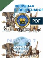 Presentación1 caracteristicas.pptx