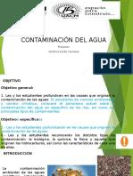 Contaminación Del Agua (Ríos)