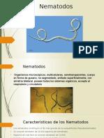 Diapositiva Sobre Los Nematodos