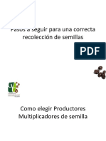 Manual para la seleccion de Semillas.pdf