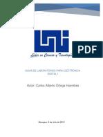 Labs FPGA
