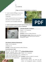 Practica de Ecologia N 04