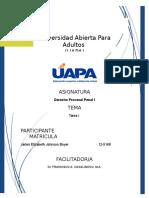 Derecho Procesal Penal I - Tarea II