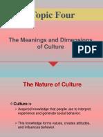 Topic 4 (culture) - pdf.pdf