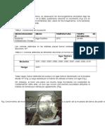 1er Infor Ing. Bioquimica