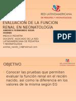 funcion renal RN