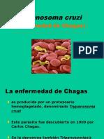 Clase epi