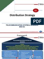 TelSysBiz 12 Distribution Strategy (2)