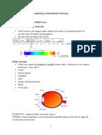 6-BIOFIZICA-PERCEPTIEI-VIZUALE.docx