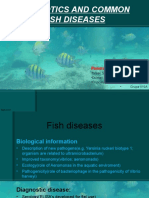 Probiotics and Fish Diseases