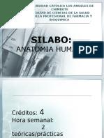 1ra Clase de Anatomia 1-04-14