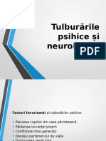Tulburarile Psihice Si Neurologice