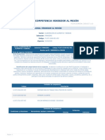 Perfil Competencia Vendedor Al Meson