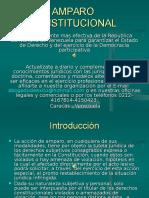 15 Diapositiva de Informacion Amparo Constitucional