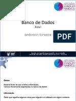 Conceitos Iniciais de Banco de Dados