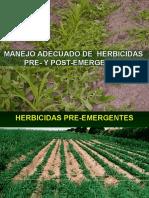 Manejo Herbicidas Pre y Post