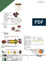 Folleto Cacao