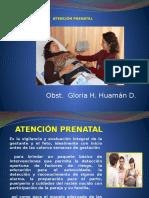 2. Atenc. Pren. Examen Clinico (2)