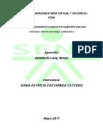 Actividad, Informe de trabajo colaborativo..pdf