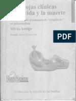 Paradojas clínicas de la vida y la muerte-Silvia Amigo
