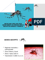 Capacitacion Dengue SABY