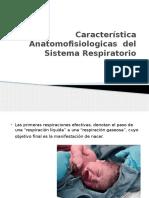 Característica Anatomofisiologicas Del Sistema Respiratorio