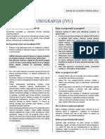 IVU2013 (1).pdf