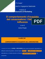 001_acquisto-Fattori Di Influenza