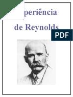 Relatório REYNOLDS.doc