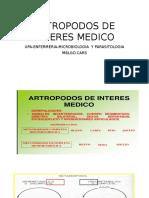 Artropodos de Interes Medico Enfermeria Universidad Politecnica de Amazonas