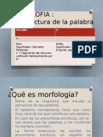 MORFOLOFIA