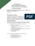 Examen Modulo 1 Ing. Sistemas e Informacion - Sistema de Informacion en Los Negocios