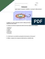 Evaluacion BLA Presencial Fila I (Nivel I)