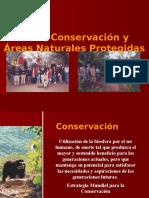 Capitulo IV Turismo Conservación y ANP 2016 II.pptx