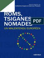 Roms Nomades Tsiganes
